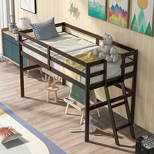 Wood Low Loft Bed with Ladder, Large Storage Space Twin Size Study Loft Bed Frame with Full Length Guradrail for Kids & Teens Bedroom (Espresso)