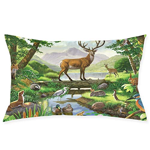 deyhfef Pillow Case 20