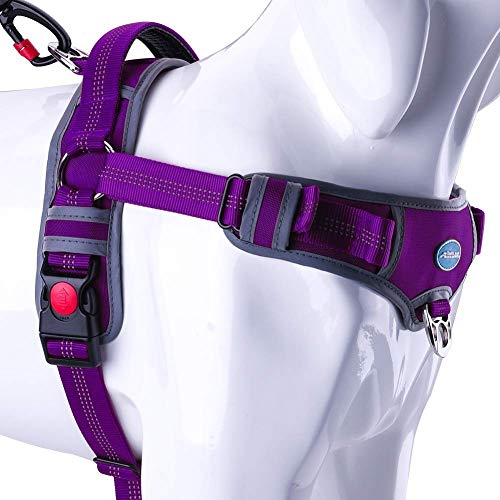 ThinkPet No Pull Harness Breathable Sport Harness - Escape Proof/Quick Fit Reflective Padded Dog Safety Vest with Handle Back/Front Clips, Easy for Small Dog Walking Training, S Purple