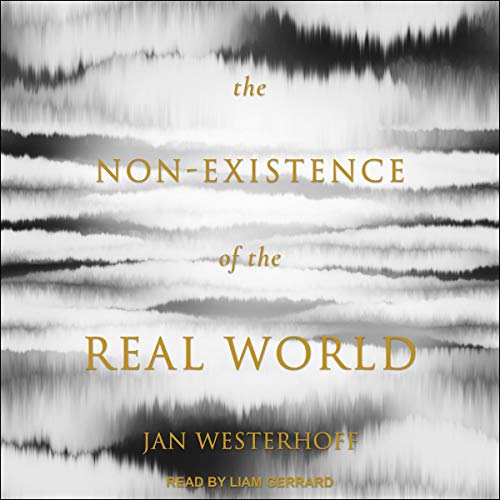The Non-Existence of the Real World cover art