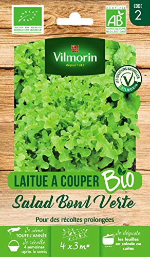 Vilmorin 3182670188312 Laitue à Couper Salad Bowl Bio Saisons-Variété Très Productive : Jusqu'à 3 Récoltes-Feuillage Vert-Blond-Vigoureuse-Résistante à la Chaleur-Sachet de 4 g