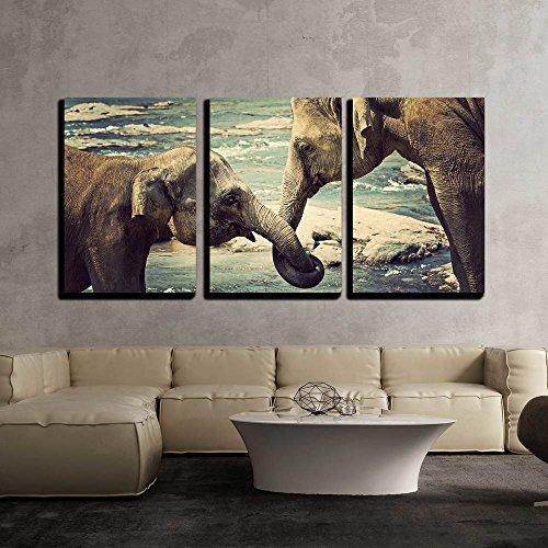 "wall26 - Elephants Kissing Sri Lanka - Canvas Art Wall Art - 16""x24""x3 Panels"