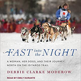 Fast into the Night audiobook cover art