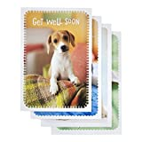 Get Well - Inspirational Boxed Cards - Whiskers and Paws