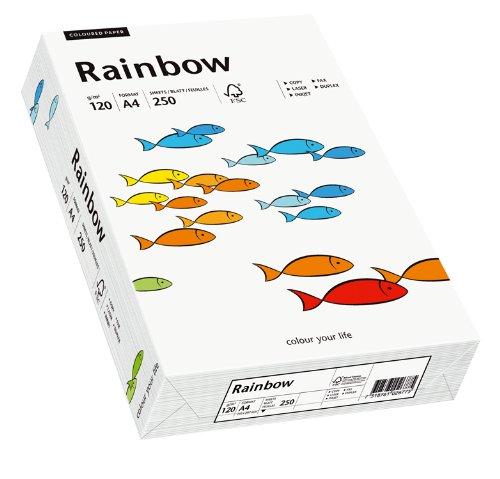 Papyrus 88042205 Drucker-/Kopierpapier, Bastelpapier: Rainbow 120 g/m², A4 250 Blatt matt, weiß
