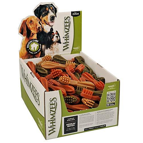 Paragon 50 Count Box of Whimzees Toothbrush Star Dog Dental Chews, Medium