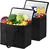 2 XL Insulated Reusable Grocery Bags Shopping Bags, Foldable Large Picnic Cooler Bag, Food Delivery Bag, Cold Heavy Duty, Sturdy Zipper, Washable, Stands Upright, 100% Lifetime Satisfaction Guarantee