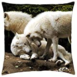 iRocket Funda de cojín con lobos blancos (24 x 24 pulgadas)