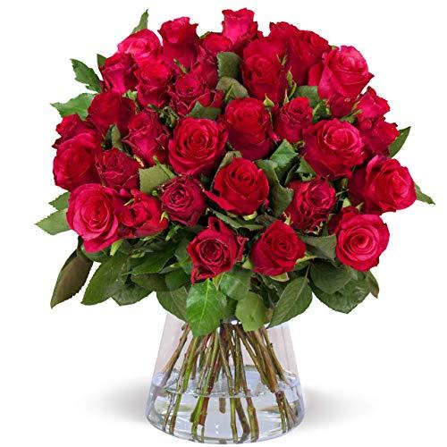 lidl blumen rosen