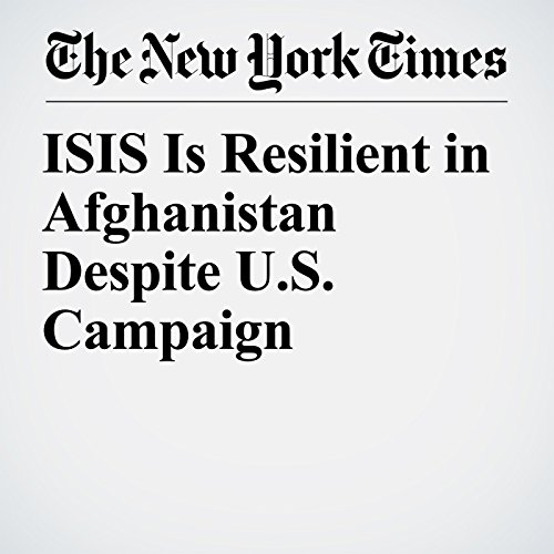 ISIS Is Resilient in Afghanistan Despite U.S. Campaign copertina