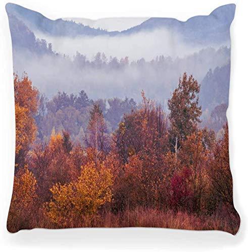 Funda de almohada decorativa Cuadrada 16x16 Rural Brumoso Otoño Paisaje Rojo Estacional Otoño Silencio Estado de ánimo Hermoso color País Decoración para el hogar Funda de almohada con cremallera