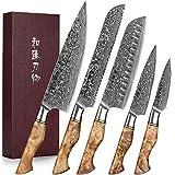HEZHEN 5 Piezas Set Cuchillo Cocina, acero de Damasco, acero japonés con alto contenido de carbono, cuchillo universal para pan de Santoku, mango de madera con sombra blanca