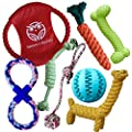Nature's Buddy Dog Toys with Treat Ball Included - 100% Natural, Tough and Durable Rope Chew Bundle - Teething Training, Interactive and Relieve Boredom for Puppy and Small Dogs