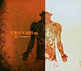 Songtexte von Between the Buried and Me - The Anatomy Of