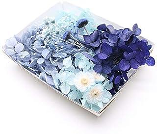 ロイヤルネイビー花材セット 手芸クラフト ハーバリウム花材 アロマワックス プリザーブドフラワー アジサイ カスミ草 イモーテル