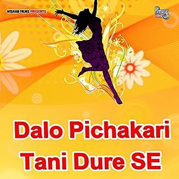 Dalo Pichakari Tani Dure SE (Bhojpuri Song)