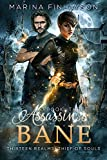 Assassin's Bane (Thirteen Realms: Thief of Souls Book 3) (Kindle Edition)