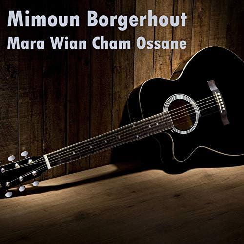 Mimoun Borgerhout