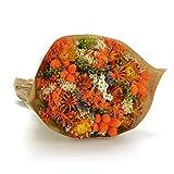 Bouquet-Fantasy- Sanremo fleurs séchées de la Riviera dei Fiori .Italie (Orange)