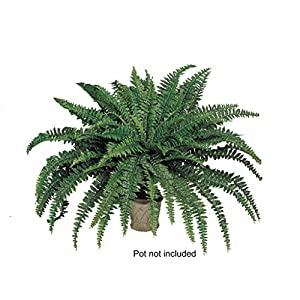 "Larksilk Boston Fern Artificial Plants Fake Silk for Outdoor or Indoor House Plant, Hanging Basket or Planter, 48"" Inch Diameter 88 Fronds, 2-Pack"