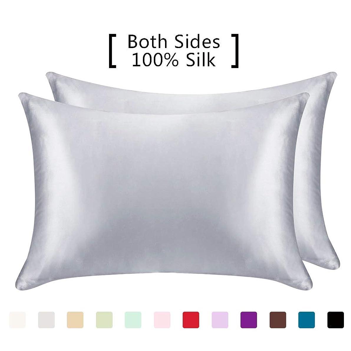 YANIBEST Pillow Cases 2 Pack 100% Mulberry Silk Pillowcase for Hair and Skin with Hidden Zipper (Standard Pillowcase Set of 2, Grey)