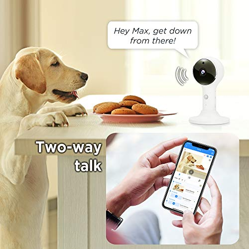 """Product Image 1: Motorola Connect60 Wireless Video Camera – 5"""" Parent Unit and WiFi HD 1080p for Baby, Elderly, Pet –- Two-Way Audio, Night Vision, Temperature Sensor, Digital Zoom"""