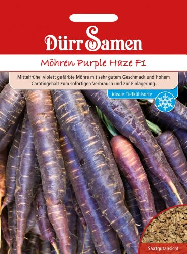 Dürr Samen 0991 Möhre Purple Haze F1 (Möhrensamen)