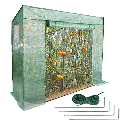 VINGO Foliengewächshaus Gewächshaus für Garten Tomaten Treibhaus Tomatenhaus mit Gitternetzfolie und Fernster, Grün, 200 x 80 x 170/150cm (LxBxH), Schrägdach
