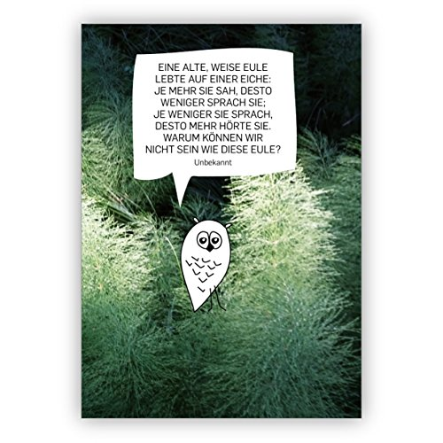 Slimme foto spreukkaart met uil: Een oude, witte uil leefde op een eik: hoe meer ze zah, des te minder was ze • mooie groet vouwkaart met envelop voor vrienden en familie