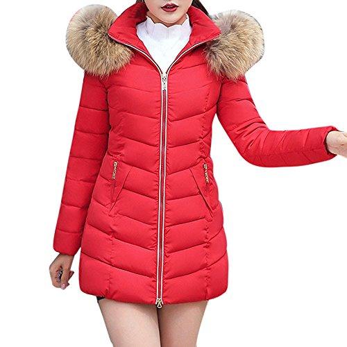 Qmber Daunenjacke Damen Mantel Ultraleicht Steppjacke Parka Winter Jacke Mit Kapuze Outwear Daunenmantel Fellkapuze Coat Hooded Warme Steppmantel, Mode Lange Dicke dünne Mantel (RD,Medium)