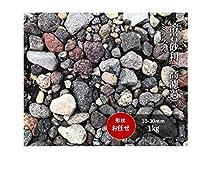 溶岩 砂利 2-30㎜ 1キロ ミックス 水槽 アクアリウム コケリウム ハーバリウム 水槽の下敷き 盆栽