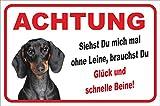 Vorsicht Kurzhaar Dackel Ohne Leine (20x30cm) thumbnail