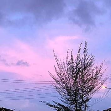 Purple Pink Skies