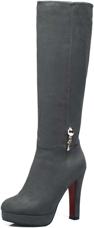 SaraIris Women's Round Toe High Heels Platform Zipper Mental Faux Suede Winter Warm Knee High Boots