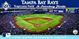 MasterPieces 91427: Tampa Bay Rays 1000pc Panoramic Puzzle