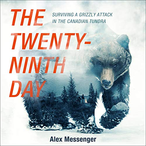 The Twenty-Ninth Day audiobook cover art
