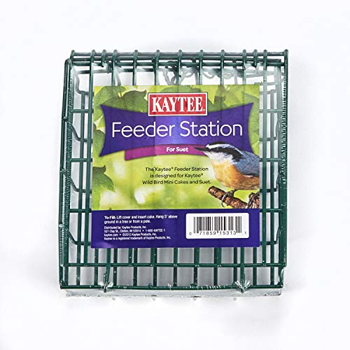 Kaytee Feeder Station for Suet Wild Bird Feeder