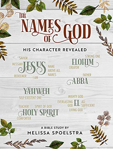 The Names of God - Women's Bible Study Participant Workbook: His Character Revealed