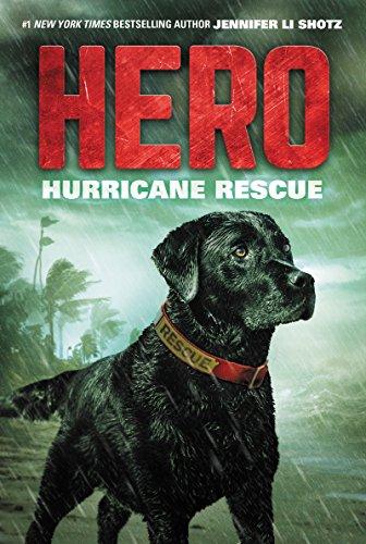 Hero: Hurricane Rescue (English Edition)