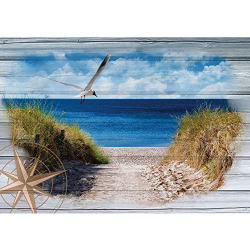 Vlies Fototapete PREMIUM PLUS Wand Foto Tapete Wand Bild Vliestapete - Sand Küste Windrose Schilf Möwe - no. 3180, Größe:312x219cm Vlies