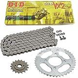 Cadena de Kymco Venox 25004–10, cadena Did 520VX2110, abierto, 14/39
