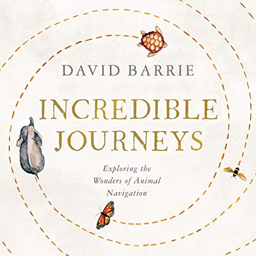 Incredible Journeys audiobook cover art