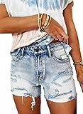 Sidefeel Women Mid Rise Destroyed Ripped Frayed Raw Hem Denim Jeans Shorts Large Sky Blue
