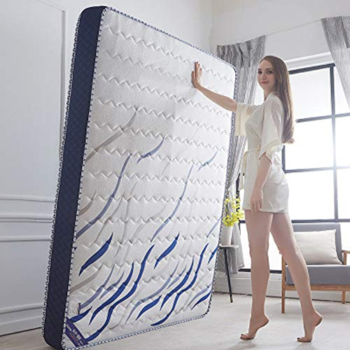 Read About ZDiane Japanese Futon Mattress, Thick Soft Memory Foam Bed Mattress Pad Double Sleeping M...