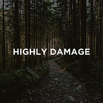 Highly Damage