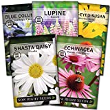 Sow Right Seeds - Perennial Flower Garden Collection for Planting - Russell Lupine, Black-Eyed Susan, Shasta Daisy, Purple Coneflower, and Blue Columbine; Heirloom Seeds, Wonderful Gardening Gift