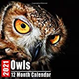 Mini Calendar 2021 Owls: Cute Owl Photos Monthly Small Calendar With Inspirational Quotes each Month