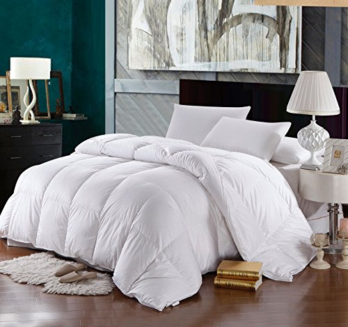 Royal Hotel Goose-Down Comforter, 500-Thread-Count, 100% Cotton Shell, 750FP - 61 Ounce, Oversized King