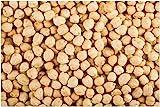 PLAT FIRM Germinazione dei semi: ceci biologici Semi 90 ceci sementi non OGM