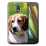 Coque pour Motorola Moto E3 2016 Races Chien/Canines Populaire Beagle/Hound Désign Transparent Doux...